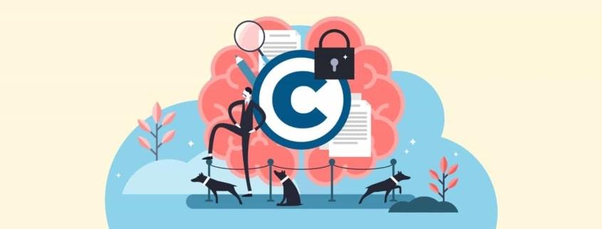 SEDA como nueva entidad de derechos de autor